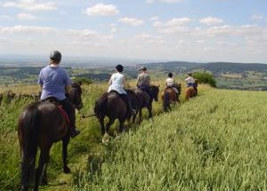Pony Trekking on the North York Moors